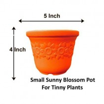 Alkarty Plastic Sunny Pot (5 Inch, Orange, Pack of 6) Indoor tinny Planter/Table top Plant Container (Plastic, External Height - 10.5 cm)