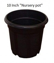 Nursery 10 inch black pots set of 6 for indoor & Outdoor Plant container