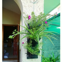 Plastic vertical garden pot 6*18