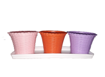 Shining Pots Set of 6 pieces with 2 white bottom trays