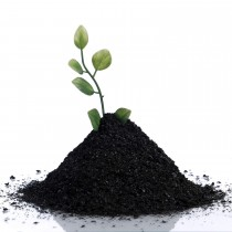 humic acid 200 grams