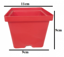 Gift a Plant pot 4 inch