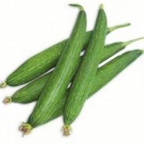 Ridge Gourd (Tori) seeds