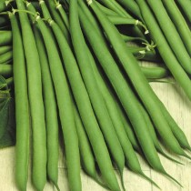 Alkarty Seed French Beans/Fresh Phalli Seeds